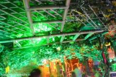 jungleweekend2013